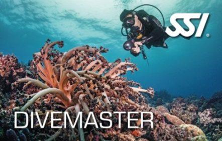 course_divemaster