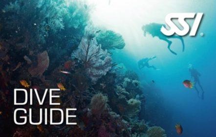 course_guide1