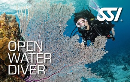 course_openwater